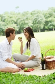 Couple having picnic in park - Alex Microstock02