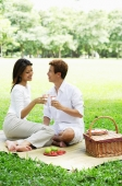 Couple having picnic in park, toasting with drinks - Alex Microstock02