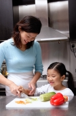 Mother cutting vegetables, daughter helping her - Alex Microstock02