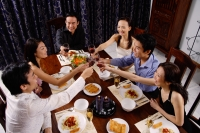 Adults at a dinner party, toasting with drinks - Alex Microstock02