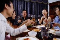 Adults at a dinner party - Alex Microstock02