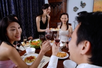 Couples having dinner party at home - Alex Microstock02
