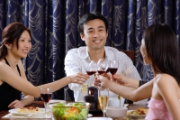 Couples having dinner at home, toasting with drinks - Alex Microstock02