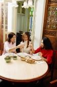 Women sitting at restaurant table, toasting - Alex Microstock02
