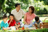 Family with three boys having picnic in park - Alex Microstock02