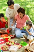 Family with two boys having picnic in park - Alex Microstock02