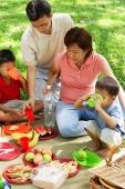 Family with two boys having picnic in park - Alex Microstock02