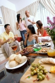 Adults in living room, having a party, food in the foreground - Alex Microstock02