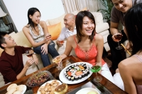 Adults having a party in living room - Alex Microstock02