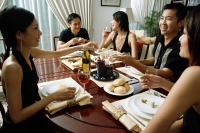 Adults having dinner party - Alex Microstock02