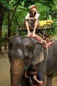 Young woman riding elephant, hand on chin, Phuket, Thailand - Alex Mares-Manton