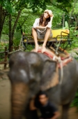 Young woman sitting on elephant, looking at camera, Phuket, Thailand - Alex Mares-Manton