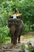 Young woman sitting on elephant, Phuket, Thailand - Alex Mares-Manton