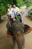 Couple riding elephant, smiling at camera, Phuket, Thailand - Alex Mares-Manton