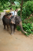 Two young women on an elephant in Phuket, Thailand - Alex Mares-Manton