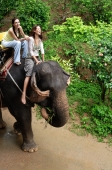 Young women riding an elephant in Phuket, Thailand - Alex Mares-Manton