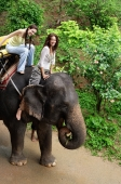 Young women riding an elephant smiling at camera, Phuket, Thailand - Alex Mares-Manton