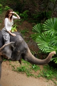 Young woman sitting on top of elephant, shielding eyes, Phuket, Thailand - Alex Mares-Manton
