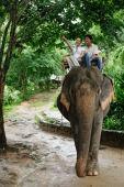 Couple riding elephant, woman pointing, Phuket, Thailand - Alex Mares-Manton
