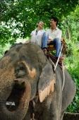Couple riding elephant, low angle view, Phuket, Thailand - Alex Mares-Manton