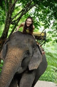 Young woman sitting on top of elephant, Phuket, Thailand - Alex Mares-Manton
