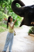 Young woman feeding elephant,  Phuket, Thailand - Alex Mares-Manton