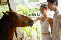 Couple in stable, woman petting horse - Alex Mares-Manton