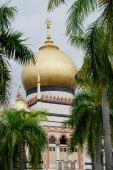 Picture of the Sultan Mosque in Singapore - Alex Microstock02