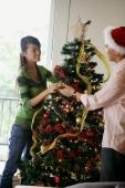 Couple decorating Christmas tree - Alex Microstock02