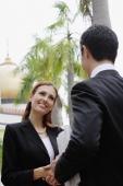 Businessman and businesswoman shaking hands - Wang Leng