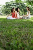 Three women sitting on grass in park - Alex Microstock02