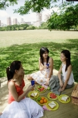 Three women in park, having a picnic - Alex Microstock02