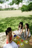 Three women having a picnic in park - Alex Microstock02