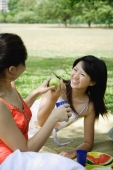 Two women having a picnic - Alex Microstock02
