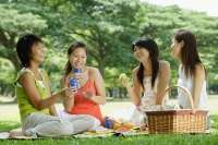 Young women sitting in park, having picnic - Alex Microstock02