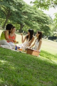 Young women having a picnic - Alex Microstock02