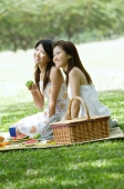 Two young women picnicking in park - Alex Microstock02