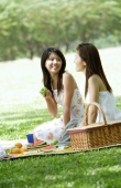 Two young women having a picnic - Alex Microstock02