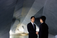 Two businessmen standing in tunnel structure, shaking hands - Yukmin