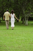 Mature couple walking in park, holding hands, rear view - Alex Mares-Manton