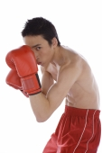 Young male boxer looking at camera - blueduck