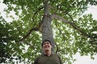 Man standing under tree in park - Yukmin