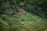 Rice Terraces, Philippines - OTHK