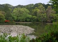 Pond, Tenryu-ji Temple, Kyoto, Japan - OTHK