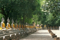 Rows of Buddhas in the courtyard at Wat Yai Chai Mongkhon, Ayutthara, Thailand - OTHK