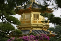 Pagoda at Chi Lin Nunnery Chinese garden, Diamond Hill, Hong Kong - OTHK