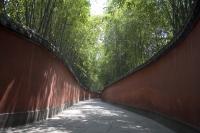 Bamboo Lane, Wuhou memorial temple, China - OTHK