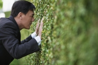 Businessman trying to looking though a hedge - Yukmin