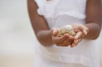 Close-up of girl holding sand with shell - Yukmin