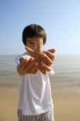 Young boy stretching out shell with both hands at the beach - Yukmin